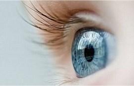 Le glaucome est une maladie de l'œilresponsable de lésions dunerf optique.